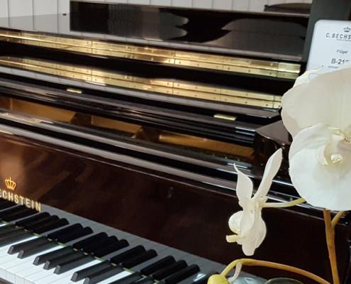 Weihnachtskonzert der Klavierklasse Anton Wildemann 2017 im Bechstein Centrum in Frankfurt